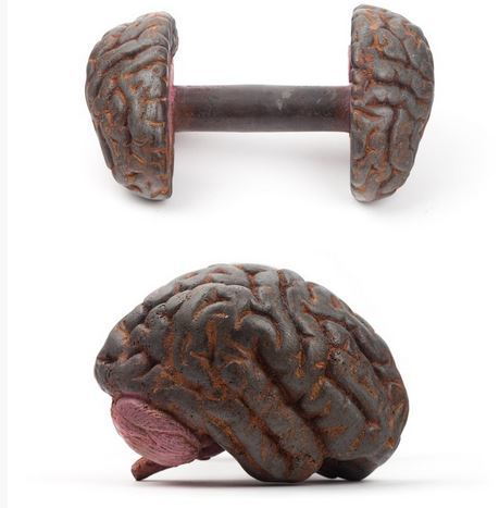brain dumbbell