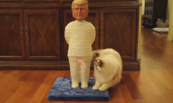 trump-cat-scratching-post