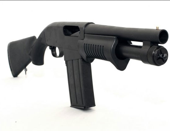 Dominion-Arms-Grizzly-Mag-8