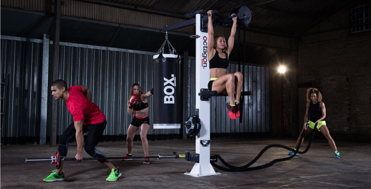 octagon-t1-functional-training-rig